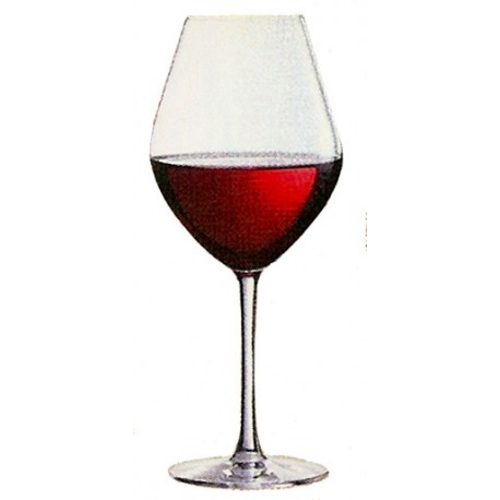 Verre FRUITY Arom'up red 43cl