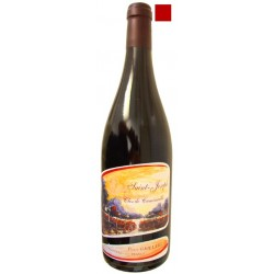 SAINT JOSEPH rouge 2014 Domaine PIERRE GAILLARD Clos de Cuminaille 75cl