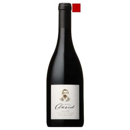 LIRAC rouge 2012 Domaine BRICE BEAUMONT cuvée de DAVID 75cl